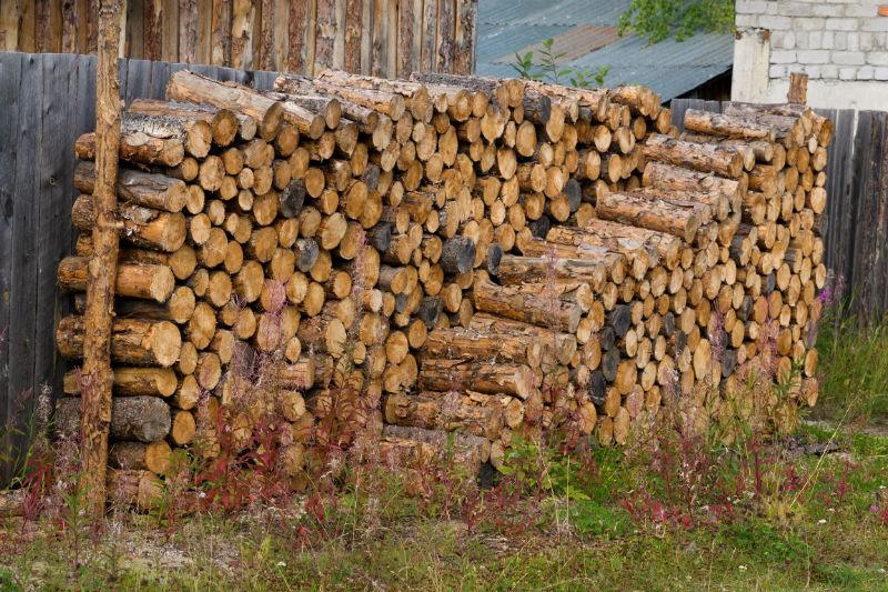 Only Burn Seasoned Firewood In Your Fireplace Or Stove