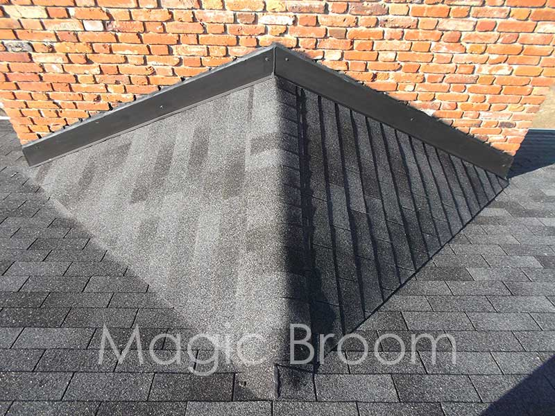 chimney-cricket-3-southern-md-magic-broom-chimney-sweeps