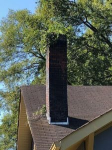 masonry chimney with vegetation growth